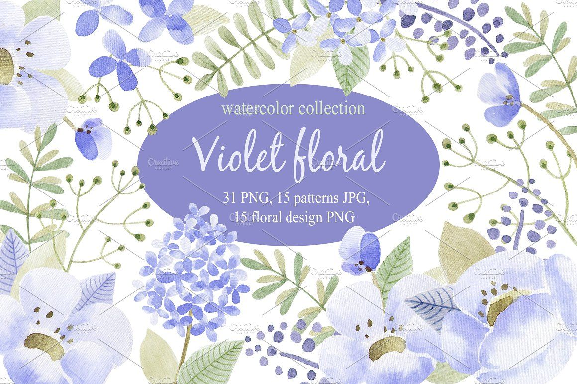 Violet flowers.Watercolor collection by Natali_art on @creativemarket