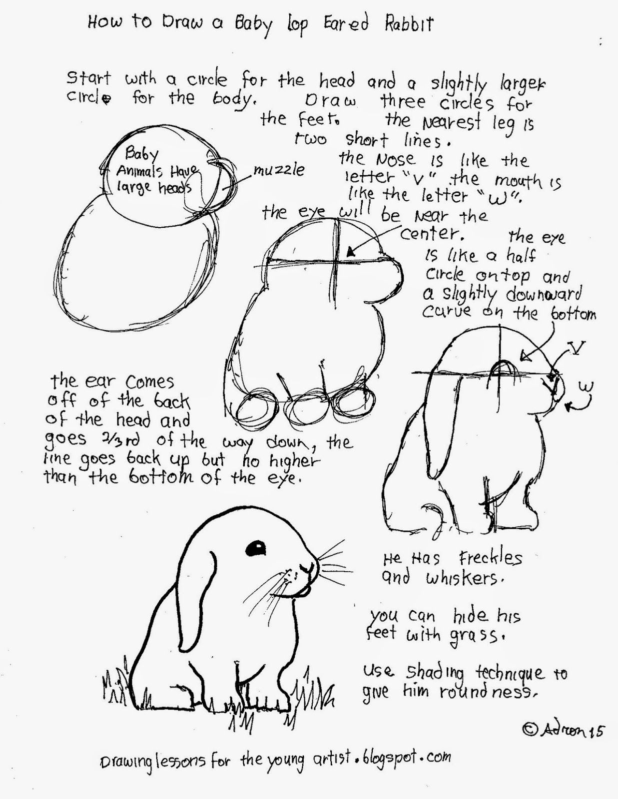 How To Draw A Babyrabbit Free Worksheet
