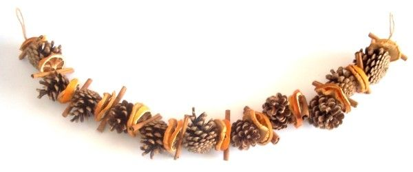 Pine Cone Orange Slice And Cinnamon Sticks Garland Maybe Add Some Red Dried Chillies Whole Oranges