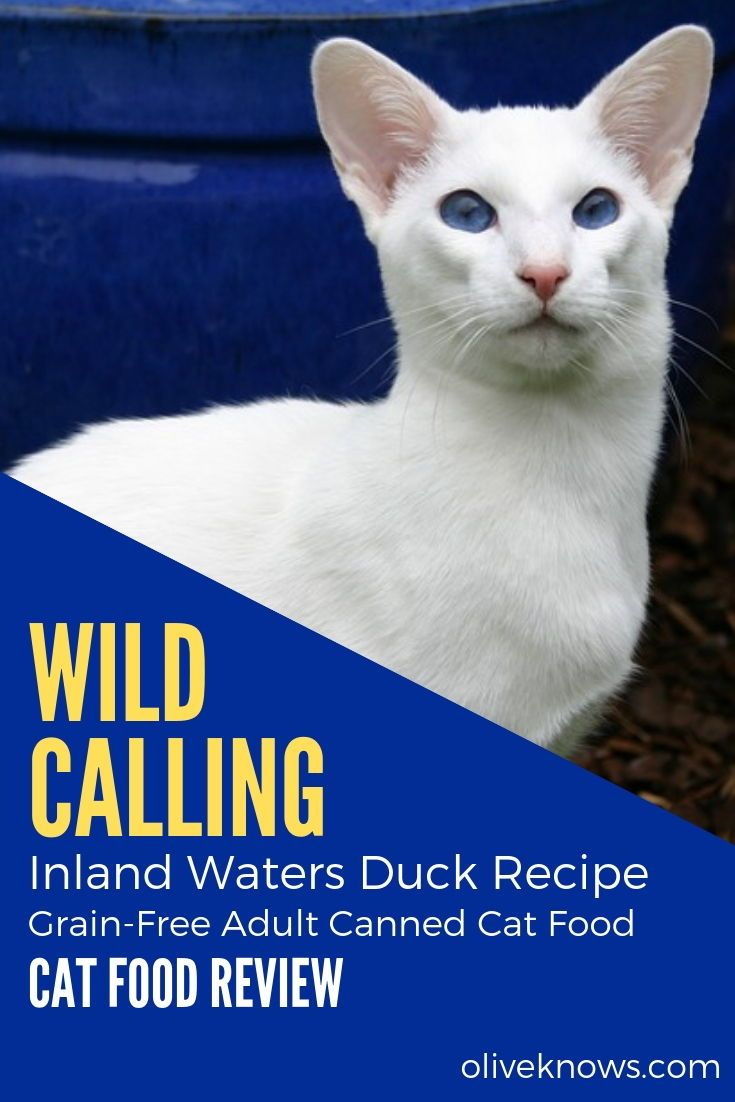 Wild Calling Inland Waters Duck Recipe GrainFree Adult