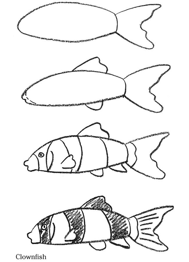 Step-by-step drawing instructions for a fish. in 2019