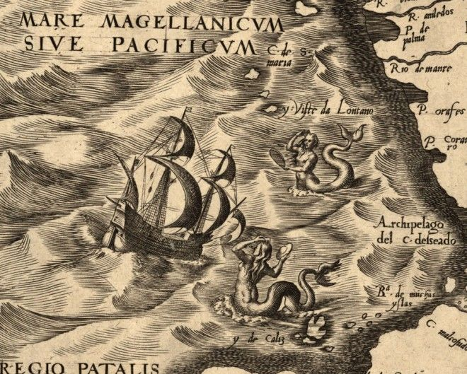 Hunting Giant Octopuses, Flying Turtles, and Other Ancient Sea ...