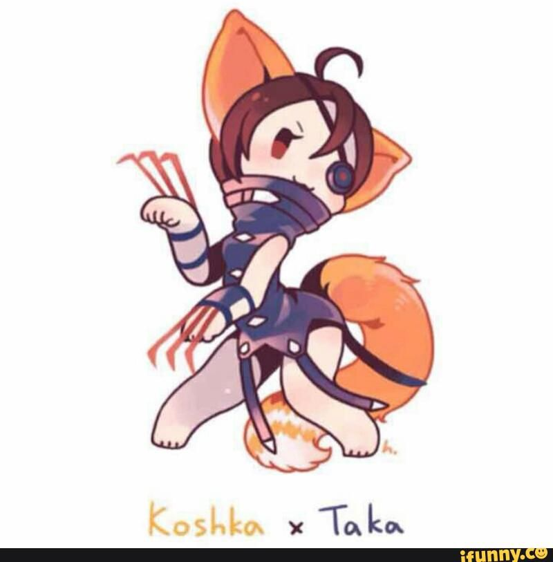 taka + Koshka, if this was real, I WILL USE IT FOREVER