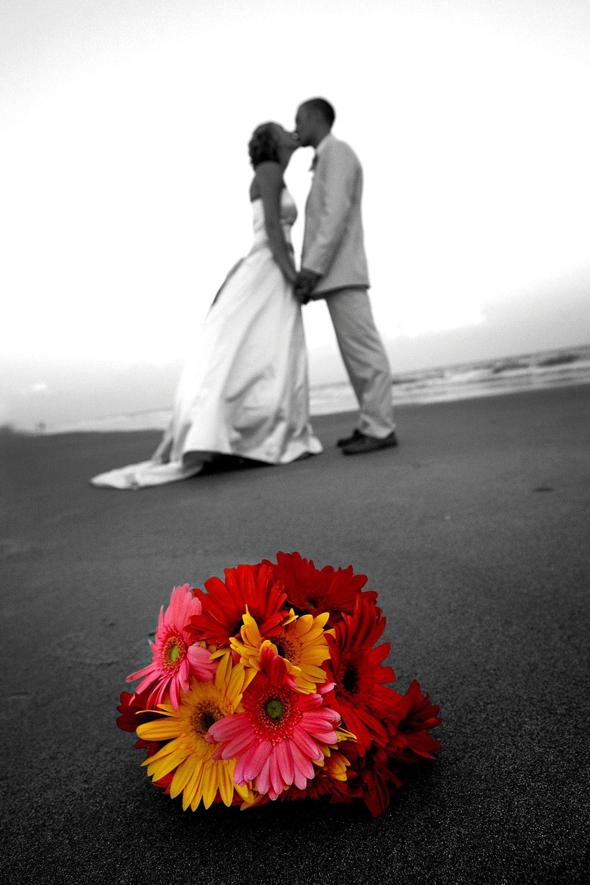 Ocean Isle Beach Wedding Planner North Carolina Weddings