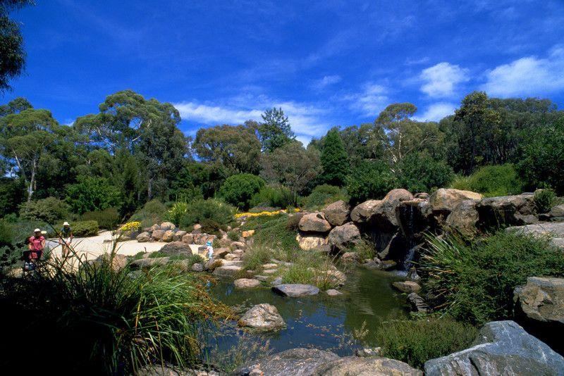 The Aussie Gardens | Australian National Botanic Gardens Reviews and Guide in Australia 91