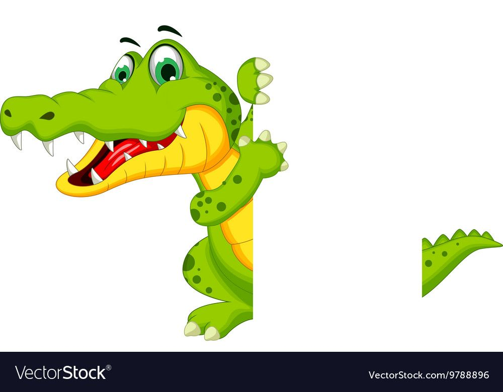 Vector Illustration Of Funny Crocodile Cartoon Posing With Blank Sign Download A Free Preview Or High Quality Adobe Illust Crocodile Cartoon Cartoon Crocodile