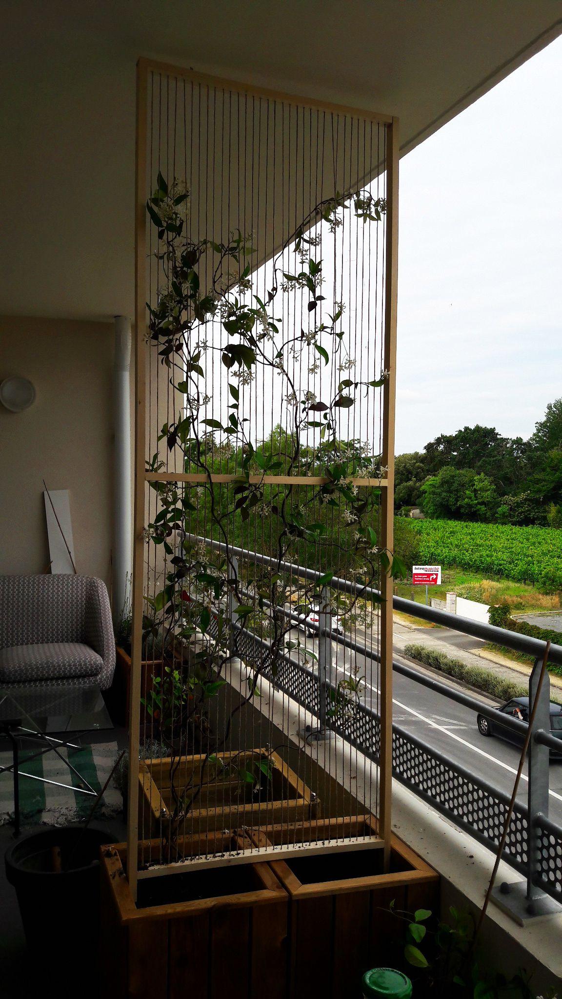 Epingle Par Thierry Benard Sur Bricolage En 2020 Plante Grimpante Plante Balcon Idee Amenagement Exterieur