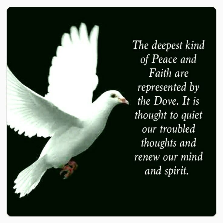 Dove Quote Yvogentleman Pinterest Holy Spirit Peace And
