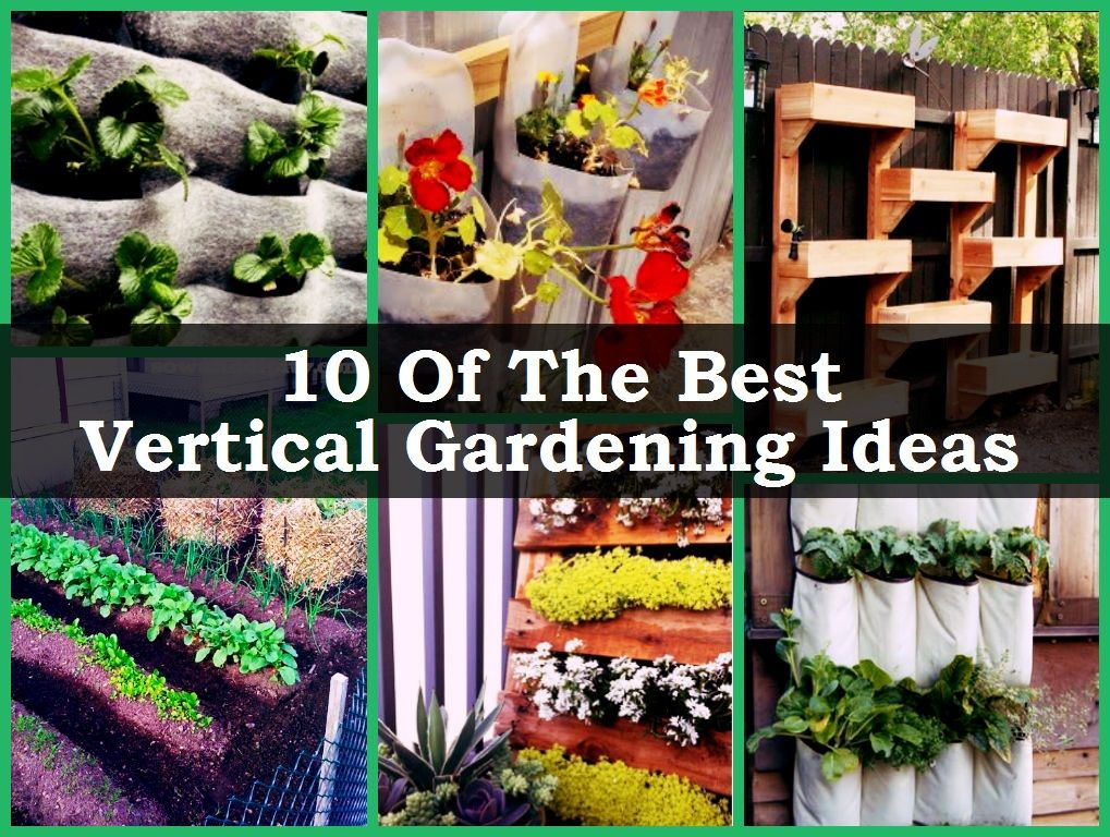 10 Of The Best Vertical Gardening Ideas