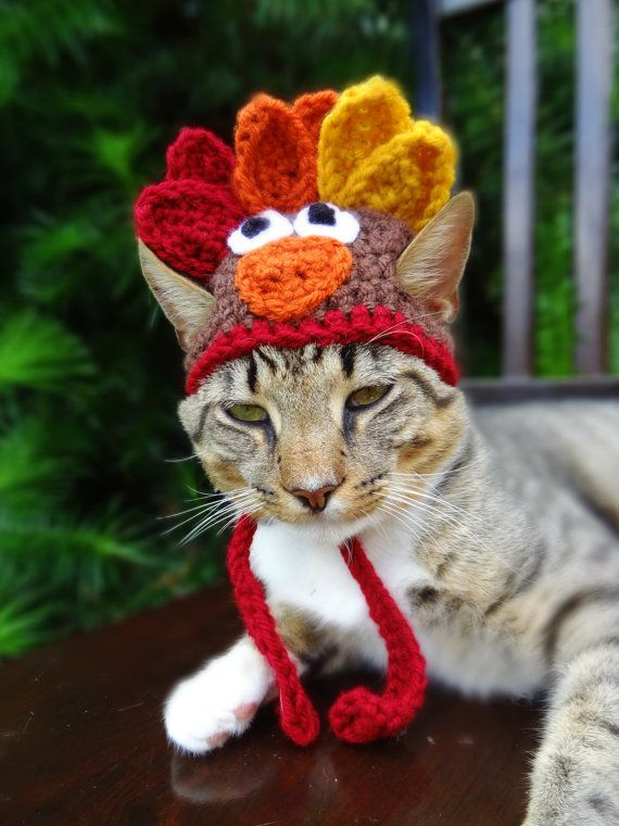 Popular Cat Hat Costume - The Thanksgiving Turkey Hat for Cats and Small  GA86
