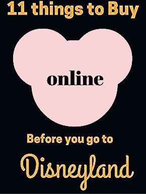 Photo of 11 Things to buy on Amazon before you go to Disneyland