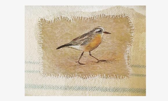 saw these in person  and loved them  Amazing up close. Bridget Sanders stitches her artwork on endangered birds onto bits of old wool blankets in concept to protect them
