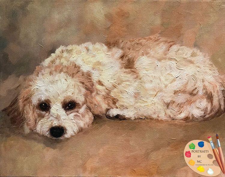 Cavachon Dog Portrait Custom dog portraits, Dog