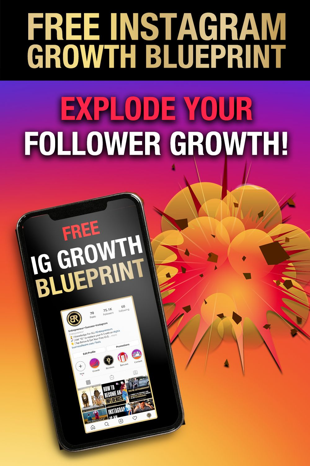 Grab Your FREE IG Growth Blueprint! 🚀 in 2020 Instagram
