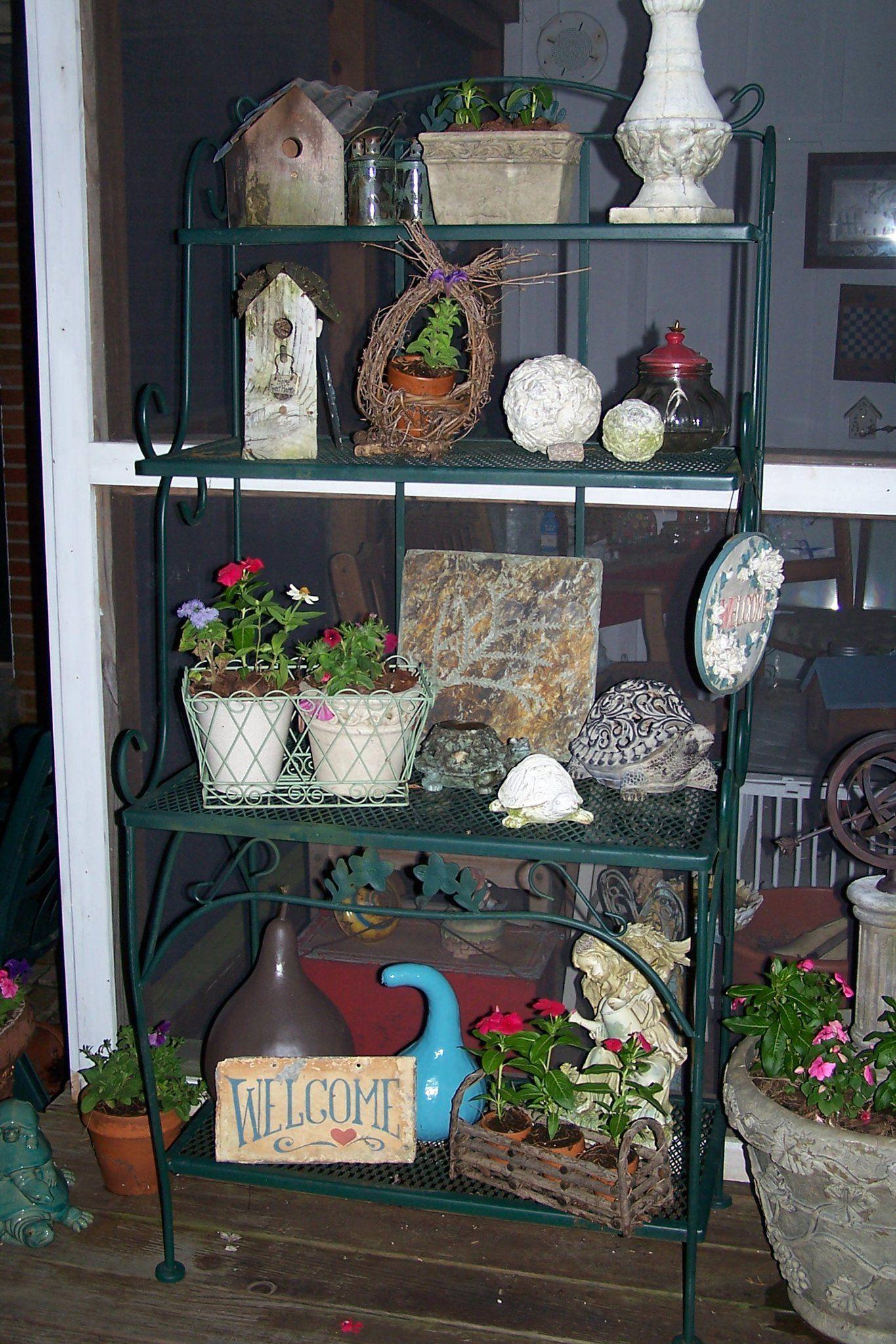 Plants For Large Pots Outdoor Planters