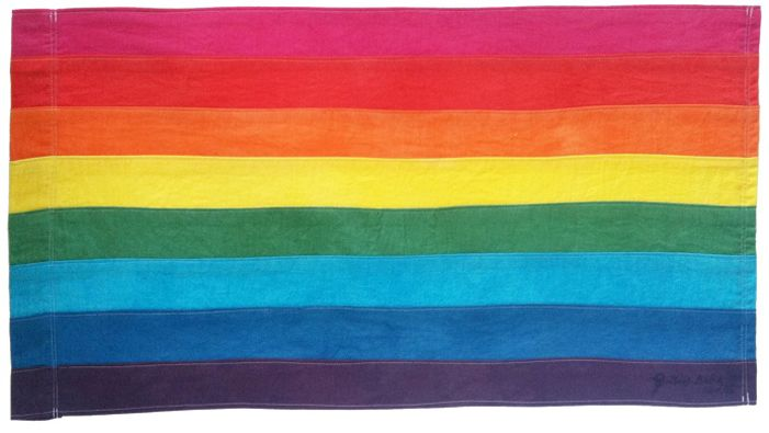The Totally True Story Behind The First American Rainbow Flag Rainbow Flag Original Rainbow Flag Pride Flags