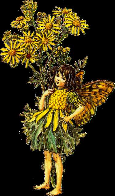 Flower Fairy...