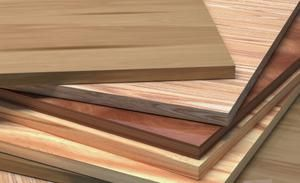 Learn about different types of wood and how to choose hard and softwoods for your projects.