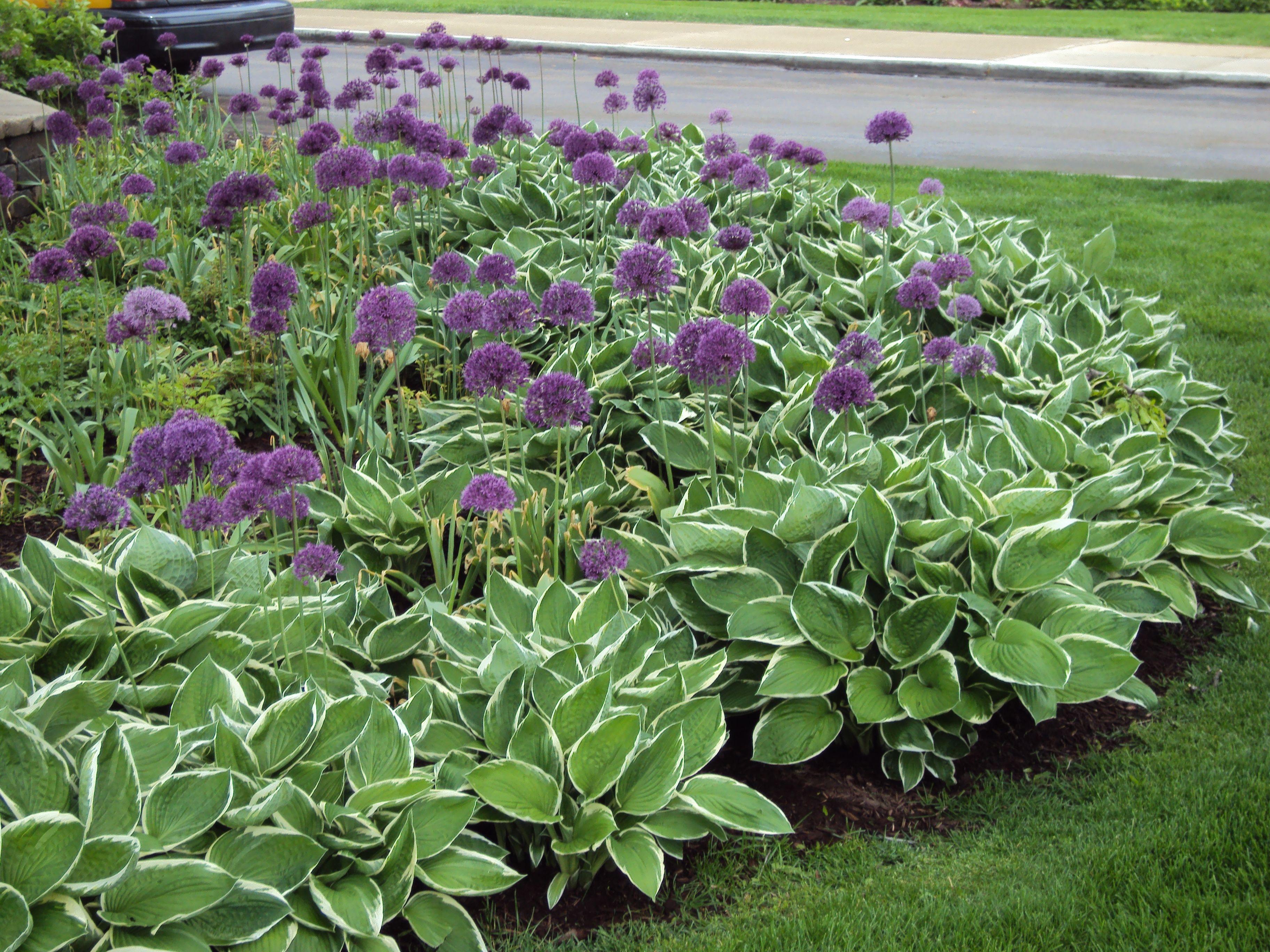 Perennial Garden Design Ideas | Desiging A Perennial Flower Bed