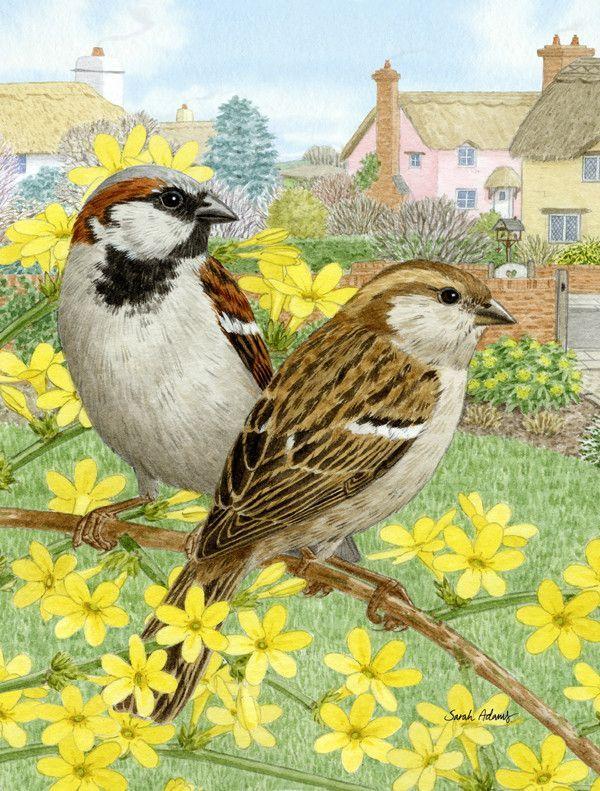 House Sparrows Flag Garden Size ASA2091GF