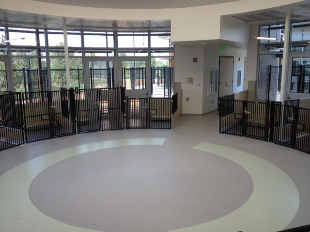 Stonhard floors create comforting designs for  dog kennels