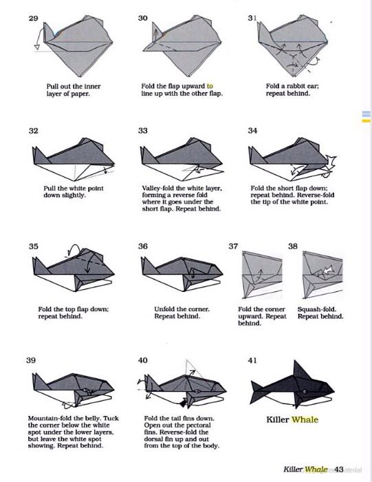 Origami Orca Instructions Part 3 Of Make Sure To Check And Follow