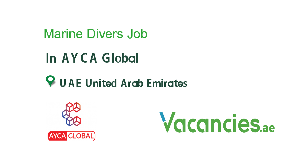 Marine Divers In 2020 Executive Jobs Accounting Jobs Job