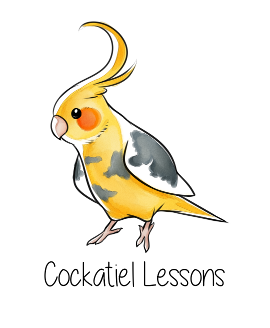 Transparent Tumblr Birds
