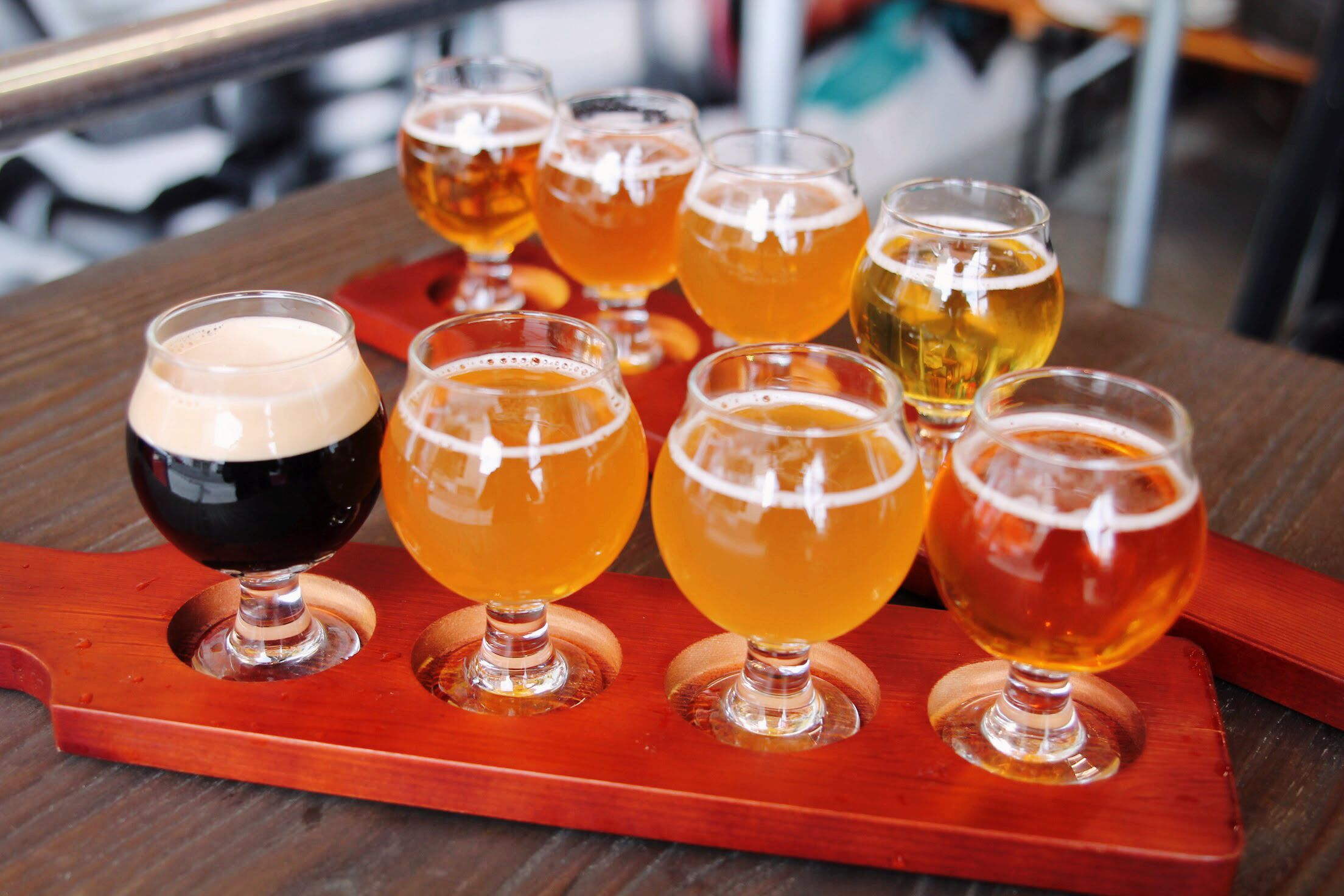 Flight Of Beers At Federation Brewing Oakland Craftbeer Beer Craft Beer Beer Brewing