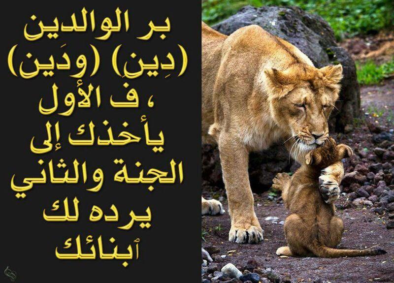 بر الوالدين Islamic Quotes Islam Facts Islam Beliefs