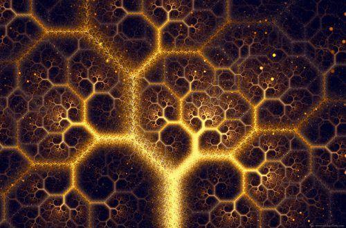 Fractal And Mind Map Fractals Fractals In Nature Fractal Tree