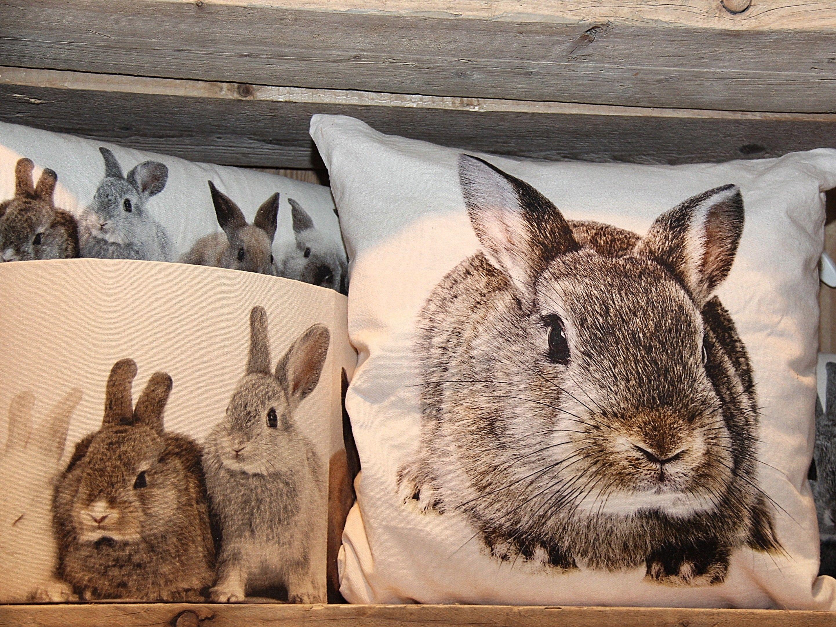 Kussen canvas konijn bruin canvas dieren kussens gregory