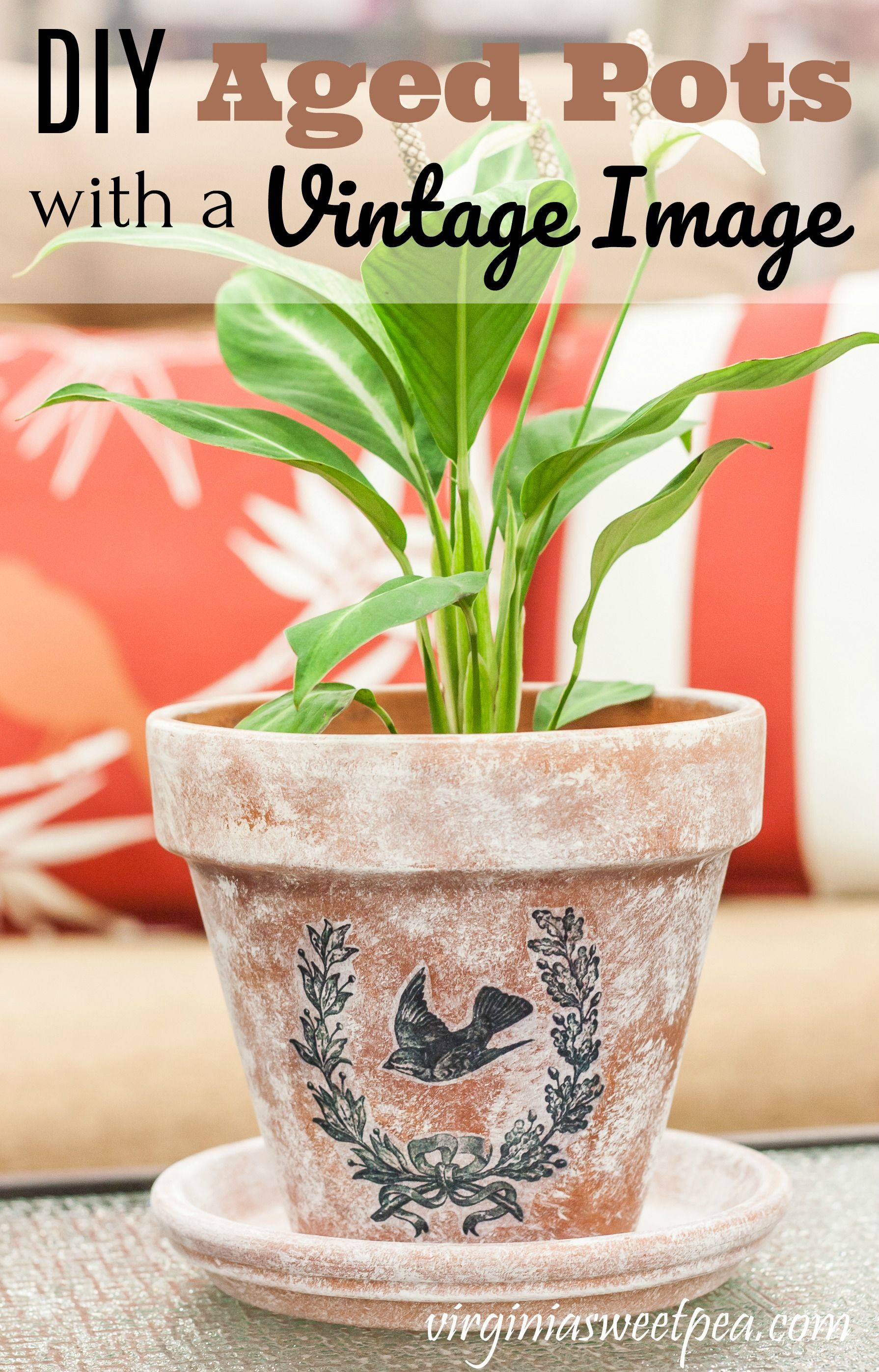 Diy Aged Pots With A Vintage Image With Images Cool Diy Projects Diy Flower Pots