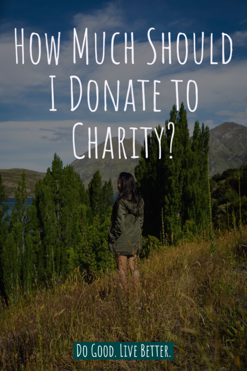 How Much Should I Donate to Charity? Learn about Peter Singer's The Giving Scale #givingback #donate #charity #charitablegiving
