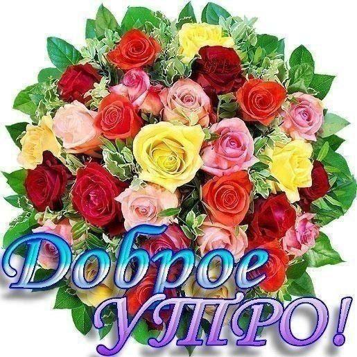 Dobroe Utro Horoshego Dnya Cvety Ukrasheniya Buket Fotografii Cvetov