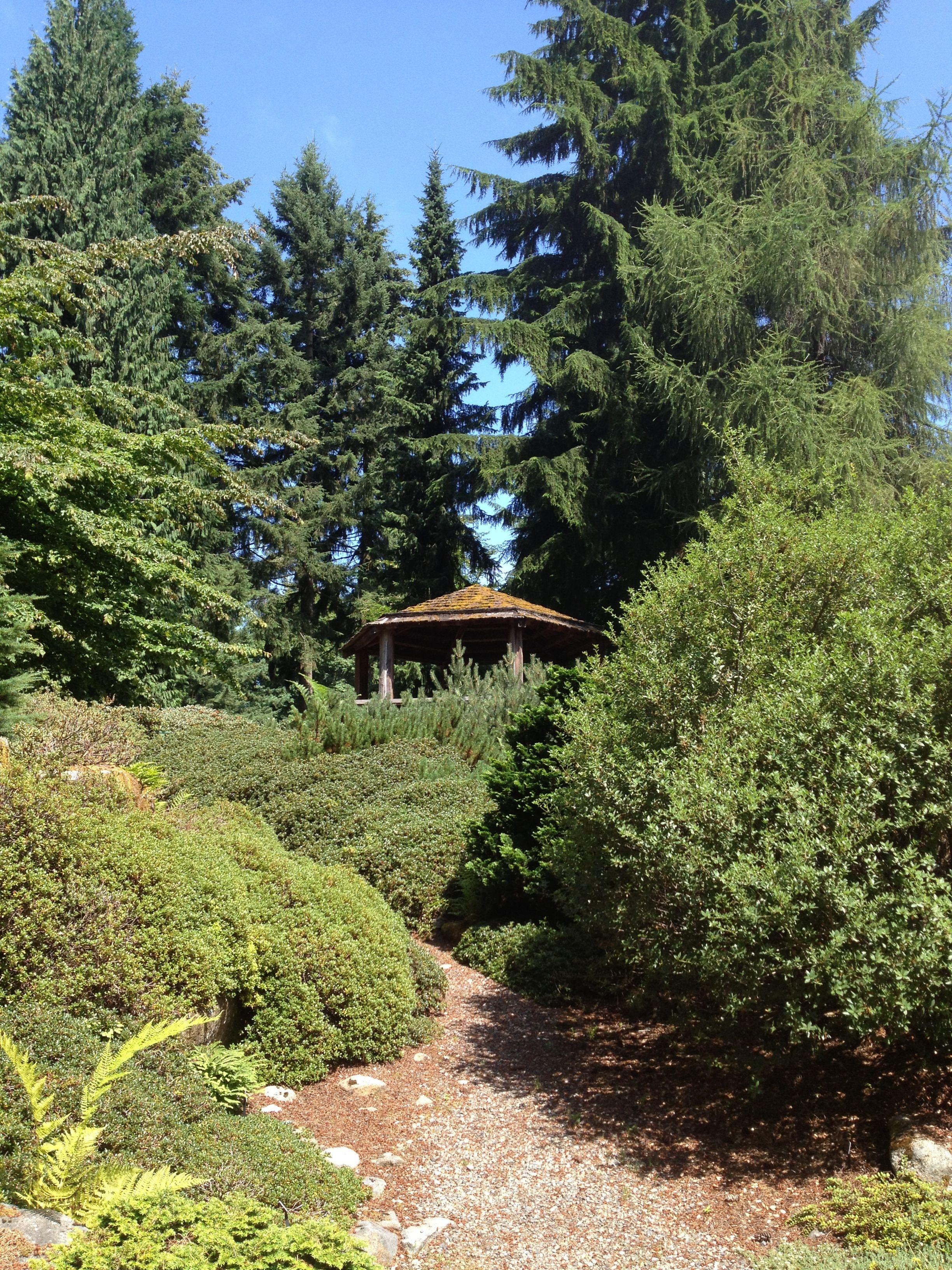 Bon Rhododendron Species Botanical Garden In Federal Way, Washington.