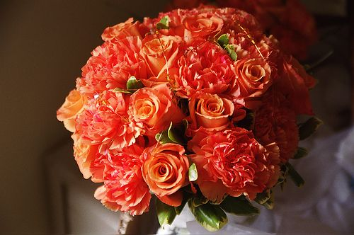 Rose And Carnation Wedding Flowers The Wedding Specialists Carnation Wedding Flowers Carnation Wedding Carnation Wedding Bouquet