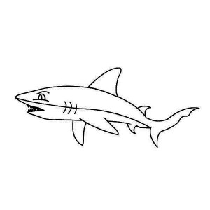 A Simple Drawing Of White Tip Reef Shark Coloring Page Kids Play Color Shark Coloring Pages Easy Drawings Coloring Pages