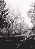 Montrose by JaclynLop818