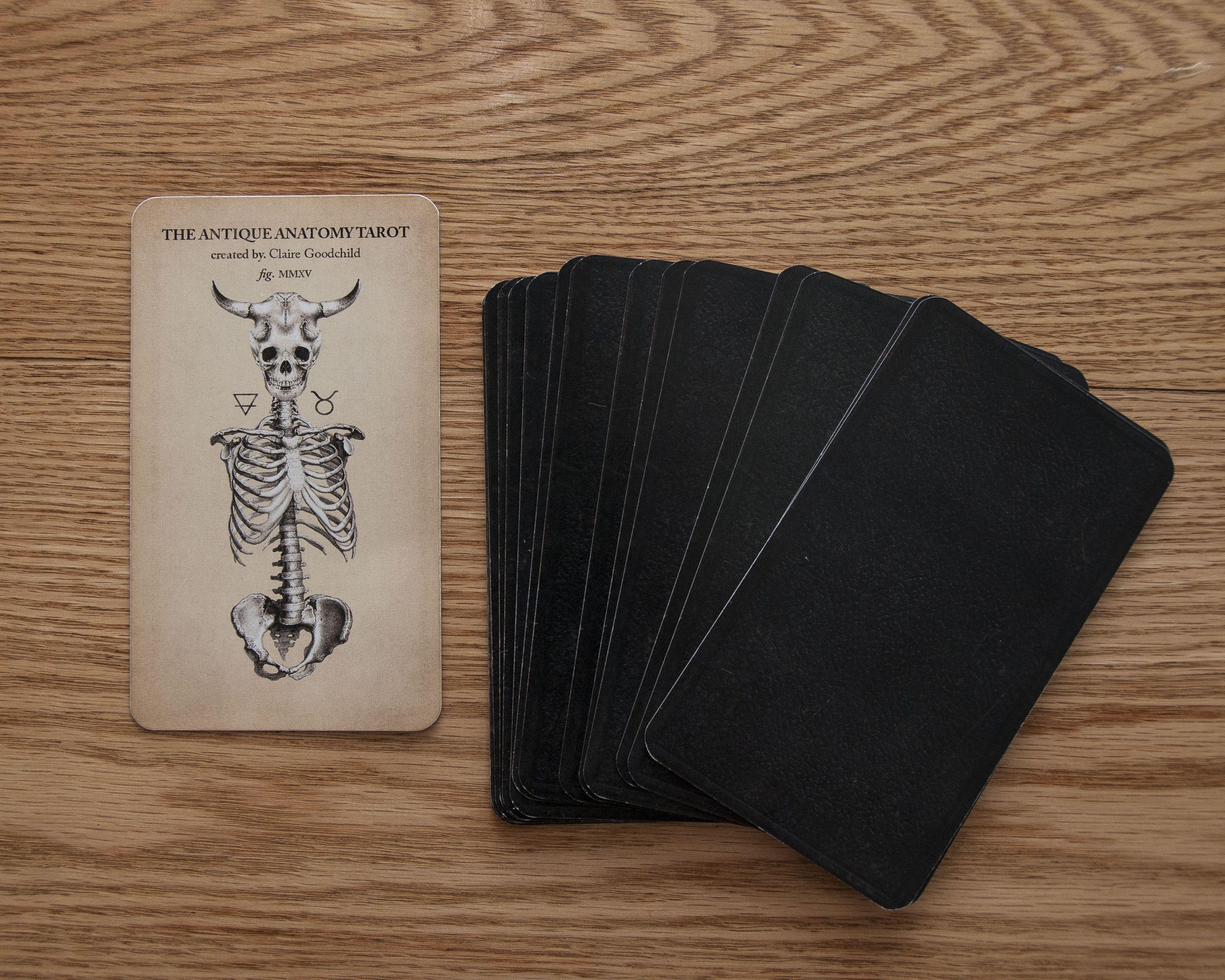 The Antique Anatomy Tarot | Tarot illustration | Pinterest | Dibu y ...