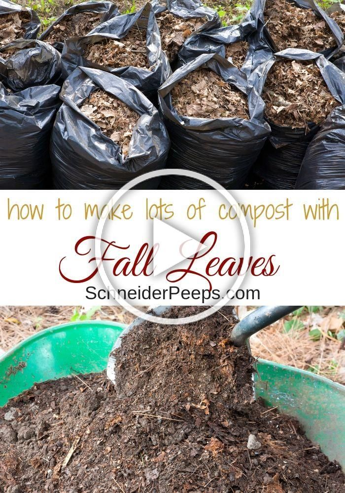 Every fall nature gives us an abundance of leaf litter that is perfect for composting in winter Composting leaves with this two ingredient method is an easy way to make a...