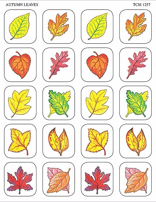 Teacher Created Resources Autumn Leaves Stickers Multi Color 1257 Teacher Created Resources OS