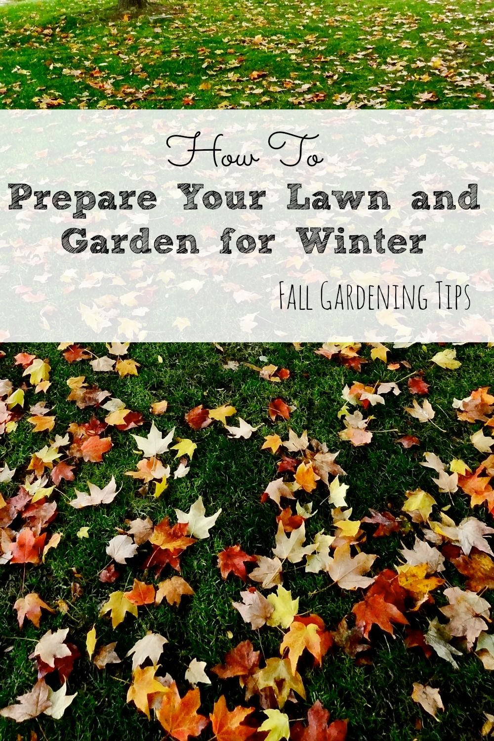How to prepare your lawn and garden for winter best of - How to prepare garden for winter ...