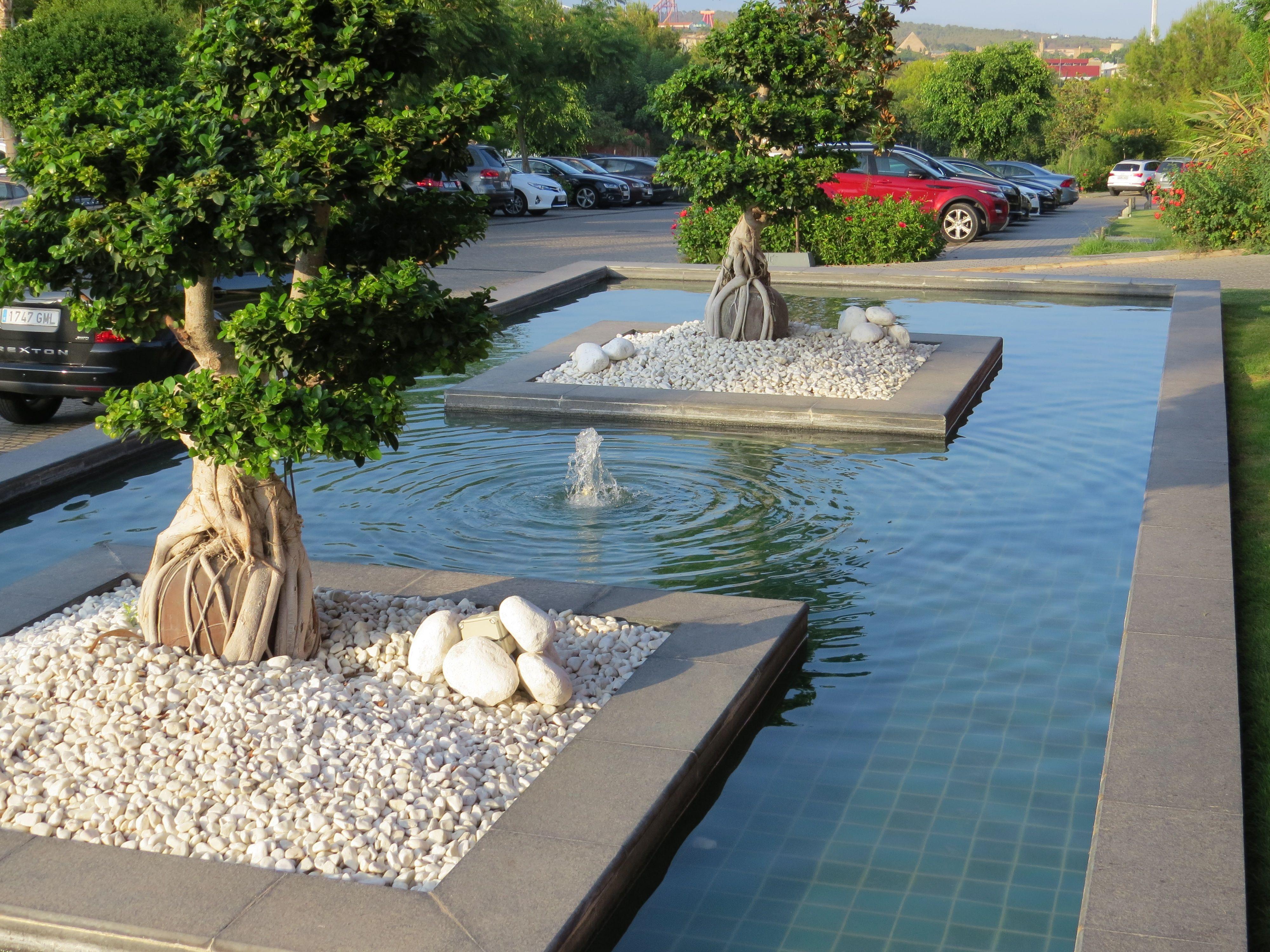 Amenagement Exterieur Galet Blanc déco jardin galet blanc | déco jardin, galet blanc