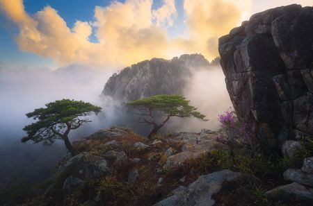 Miracle On The Mountain Photo By Nathaniel Merz National Geographic Your Shot Landscape Landscape Photography Scenery
