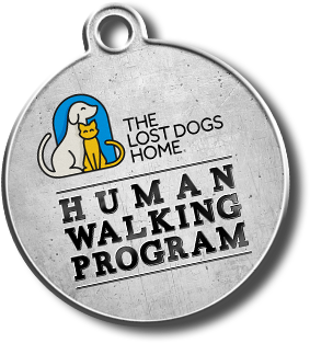 The Lost Dogs' Home's newest initiative 'The Human Walking