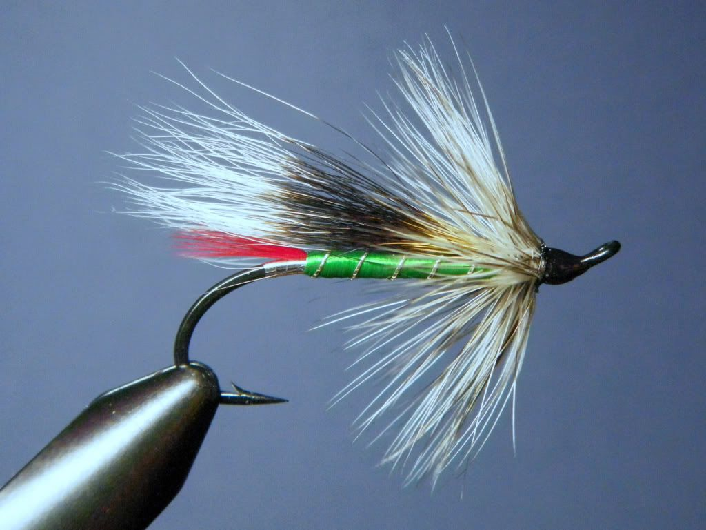Classic salmon steelhead hairwing flies dharma of the for Salon fly