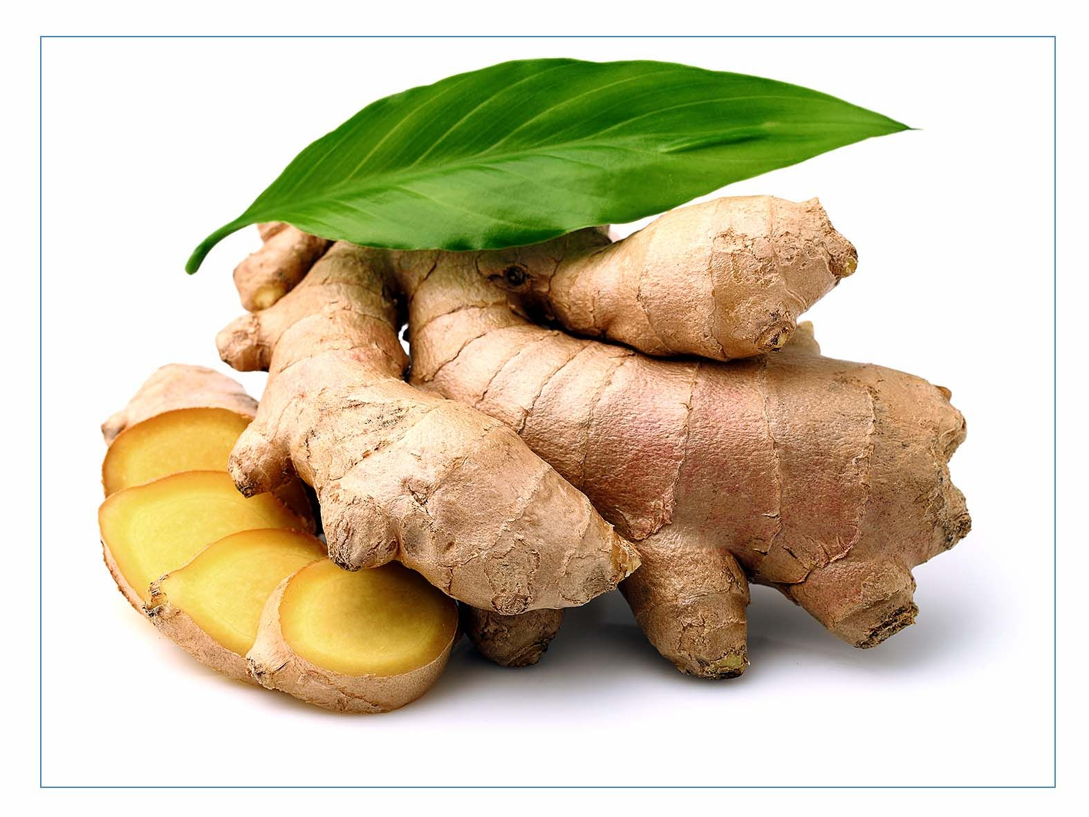 7 Health Benefits of Ginger About Ginger:  Ginger is a flowering plant , ginger root or simply ginger, is widely used as a spice or a traditional  medicine. Each ginger plant can grow up to three feet high and produce 2-5 sections of ginger, which can be harvested year-round. After a ginger root is broken off from the main plant it is washed and dried in the sun. Once dried, it can be used for cooking or medicinal purposes. See more..naturebring.com/blog/