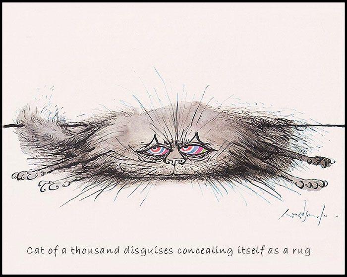 Смешные картинки с рисованными кошками, днем