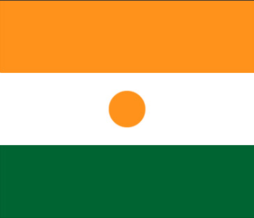 Niger Flag Flags Of The World African Flag National Symbols